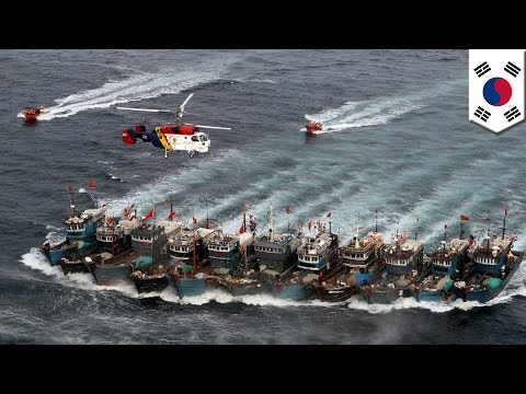 China Vs South Korea: Chinese Fisherman Killed In Yellow Sea During Crackdown On Illegal Fishing