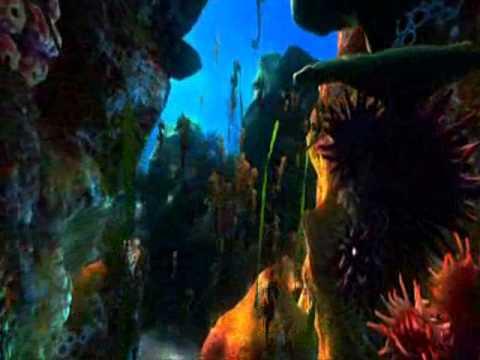 видеоролик В подводном царстве