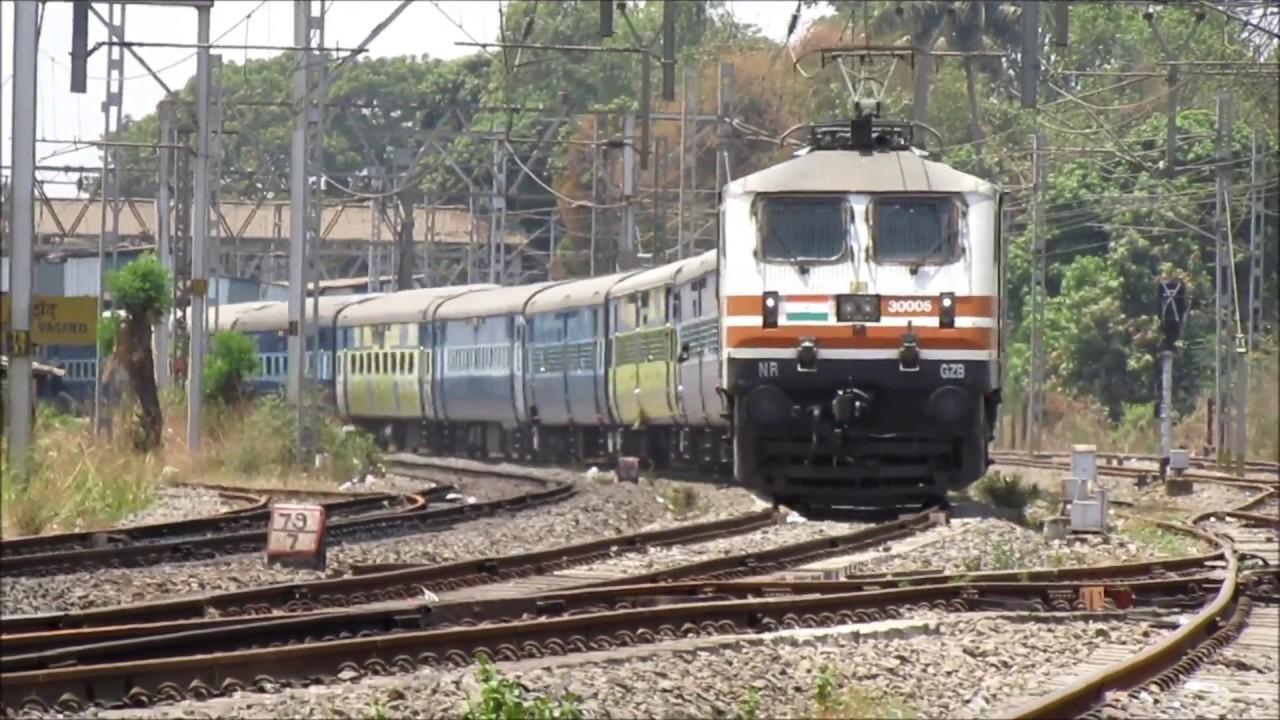 tiger train station surprises - 1200×675