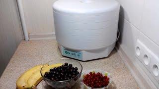 видео Сушилка для продуктов Ezidri Snackmaker FD500