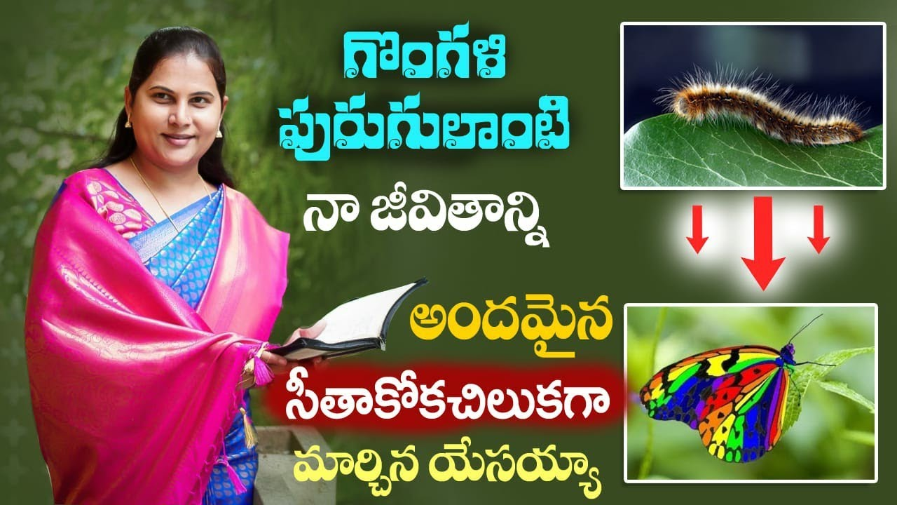 Jesus turned my life from a caterpillar into a beautiful butterfly ! Anjali Evangelist