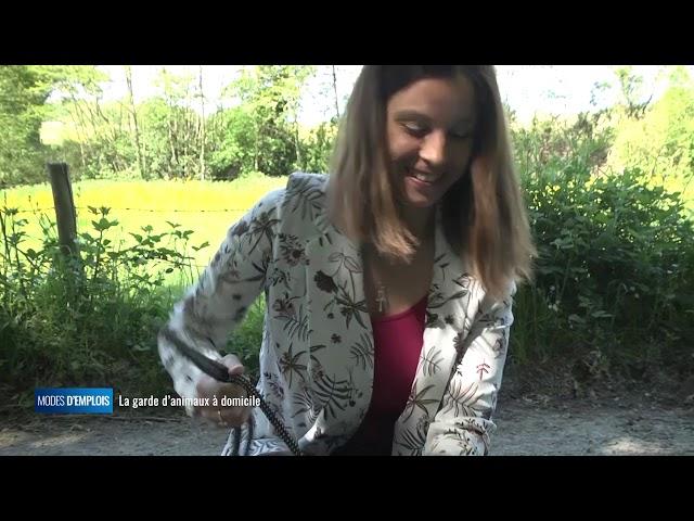 Modes d'emplois - La garde d'animaux à domicile