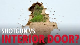 Shotgun vs Door: Into the Fray Episode 230
