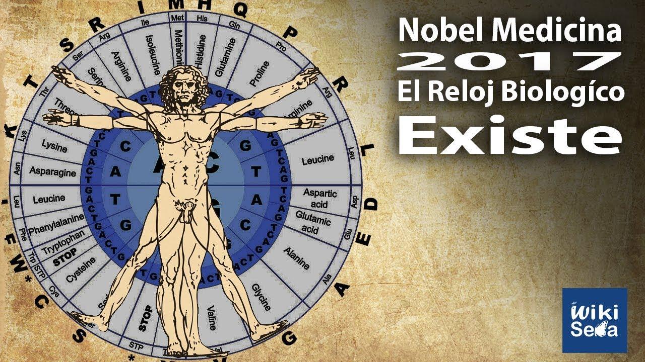 El Reloj Biológico Existe | Premio Nobel 2017