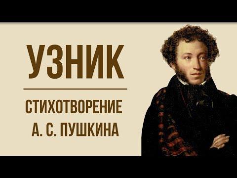 «Узник» А. Пушкин. Анализ стихотворения