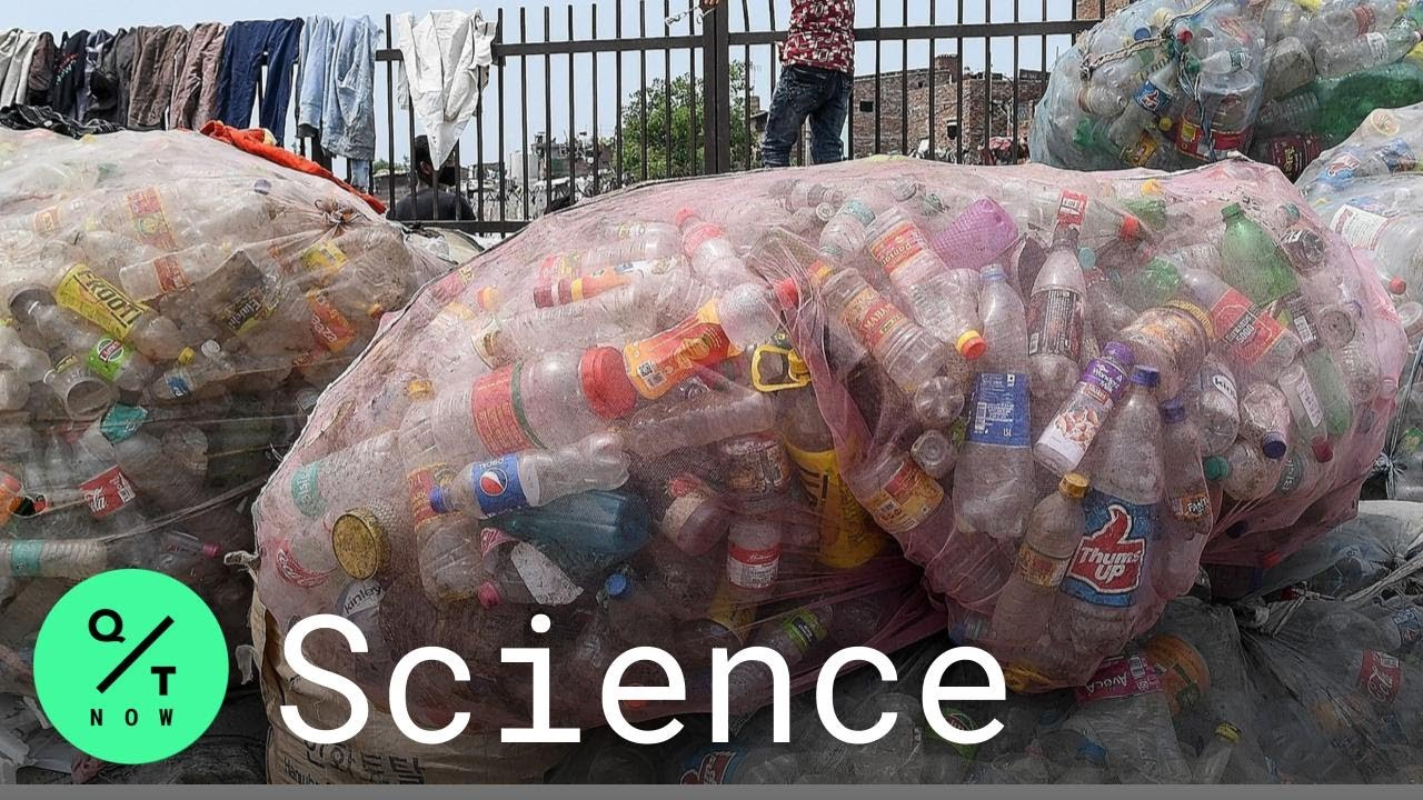 Scientists Create 'Super Enzymes' to Fight Plastic Waste - Bloomberg QuickTake: Now