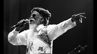 Stay With the Reggae with  Lyrics   Bunny Wailer