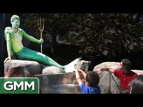Real Life Merman Exhibit