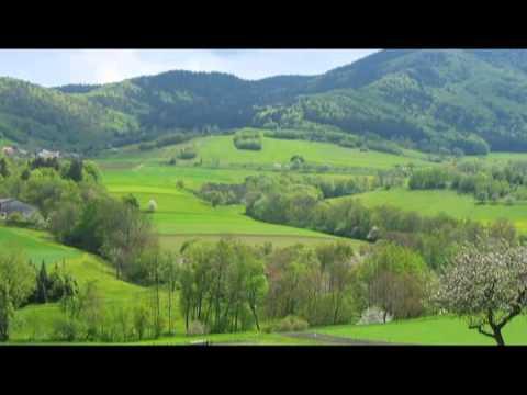 Слушать онлайн И.С.Бах - Ария Баха из оркестровой сюиты №3 (zaycev.net)