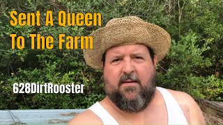 Rural America Beekeeping Off Grid With Doug & Stacy