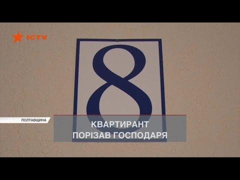 Здав квартиру іноземцю і поплатився життям – студент зарізав господаря на Полтавщині