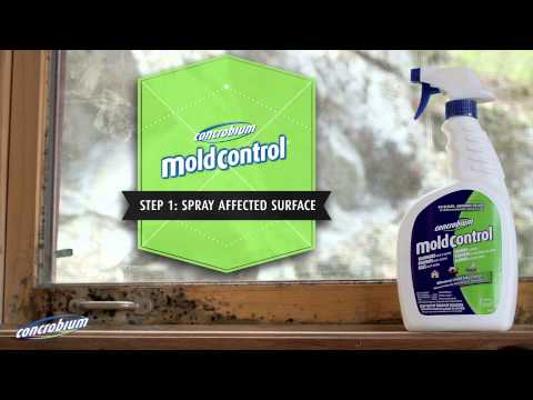 Mold Control Spray Concrobium