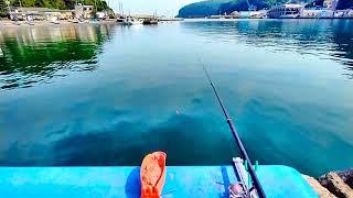 【釣り】神奈川県真鶴漁港