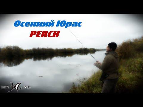 Осенняя рыбалка на Юрасе