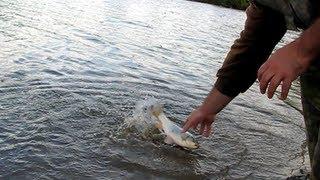 Фільм 2 Риболовля ''В серпні 2009-го...''