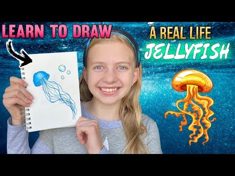 Draw A Cute, Realistic Jellyfish || Art With Alyssa