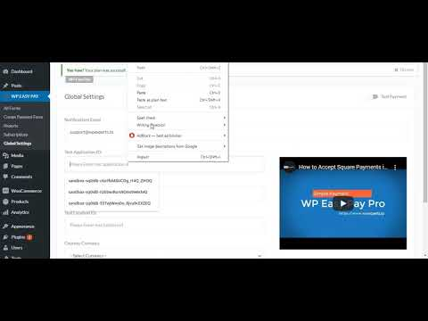 How To Set Up A Sandbox Account In WPEasyPay Plugin