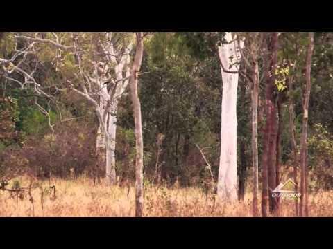 Shockey Hunting Adventures Australia