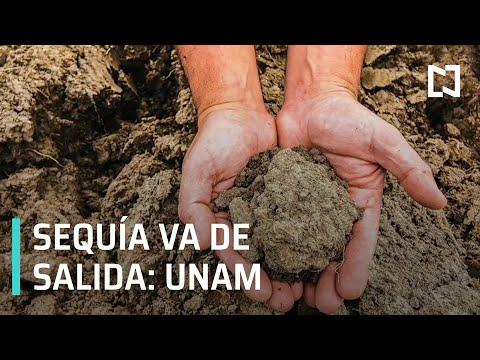La sequía en México 'va de salida', según investigadores de la UNAM - Despierta