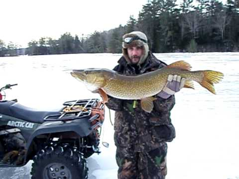 how to catch big northern pike