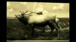 Dark Dark Dark - The Snow Magic - 09 A Spell For Letting Go