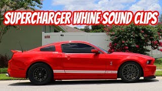 Crazy Loud Supercharger whine! VMP Gen 3 R Supercharged GT500 WOT Pulls Sound Tube Mod