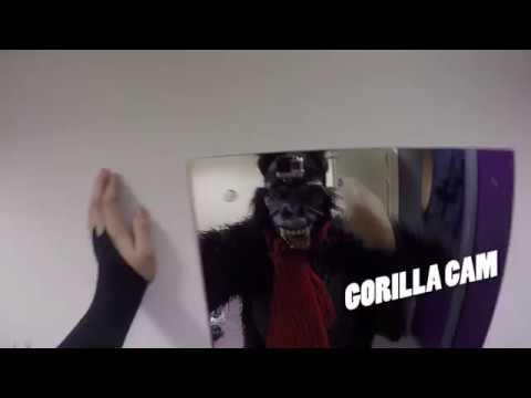 The Snow Queen - Gorilla Cam