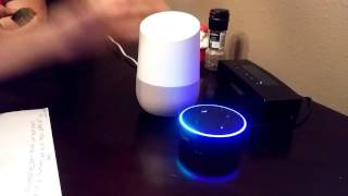 alexa has a conversation with ok google