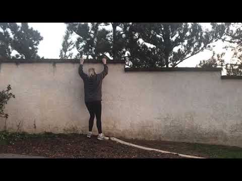 Colton Jumping fence?