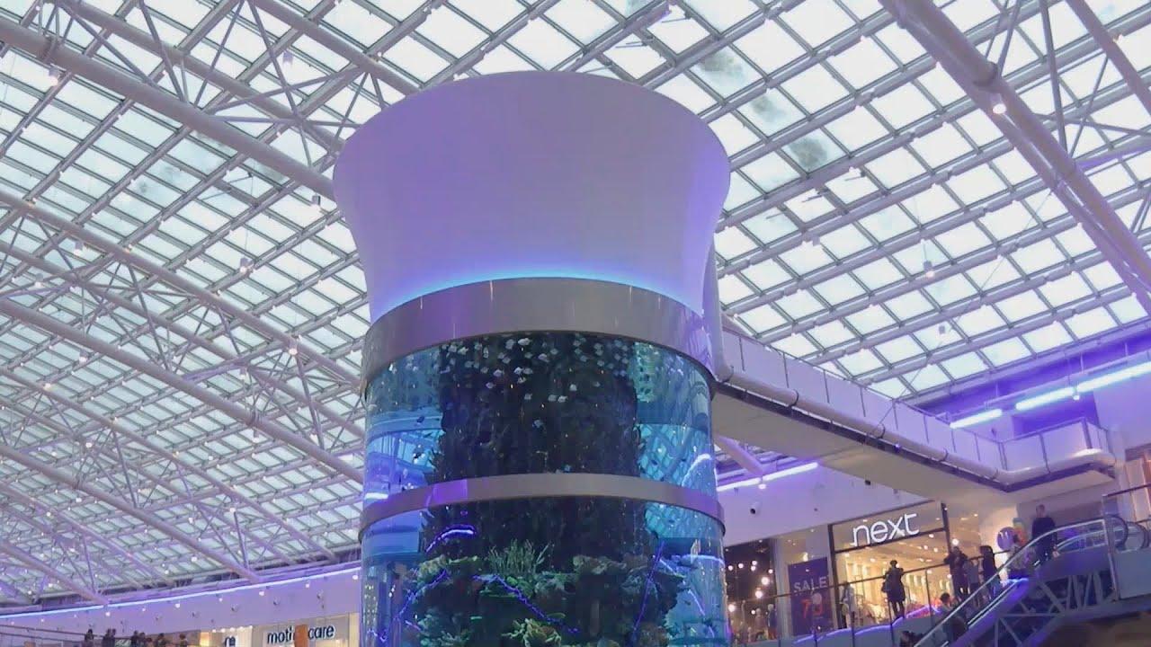 Москва-АвиаПарк. Самый большой цилиндрический аквариум в мире (23 метра) 282cd7be2c1