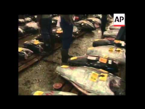 Self Defense Forces Drills at foot of Mt.Fuji, Tsukiji fish market
