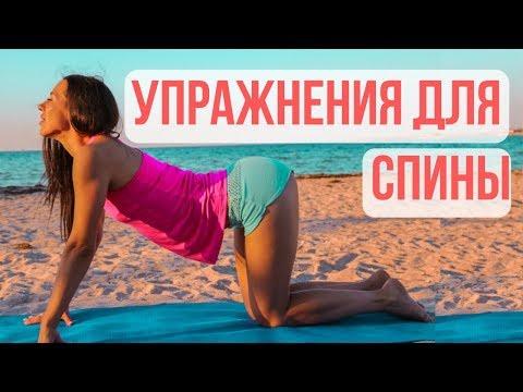 ТРЕНИРОВКА СПИНЫ ДЛЯ ДЕВУШЕК | упражнения для красивой ,рельефной спины