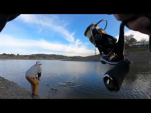 Lake Amador Trout Fishing