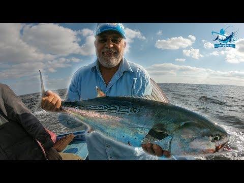Trolling fishing offshore Alexandria - Egypt