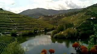 Quinta do Tedo (Douro Valley)