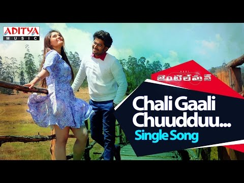 Chali Gaali Chuudduu Song With Lyrics || Gentleman Songs || Nani,Surabhi,NivedaThomas,Mani Sharmaa gentleman full video song.