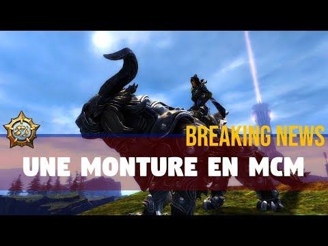 Guild Wars 2 : UNE MONTURE EN MCM!! thumbnail