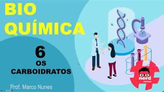 Roteiro 2 (bioquímica): Aula 6 - Os carboidratos (Professor Marco Nunes)