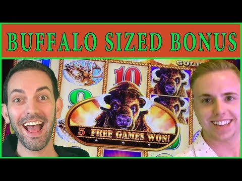 🐃 HUGE Buffalo Sized Bonus! ✦ w/ The Bingo King ✦ part of Brian's Theme Thursdays