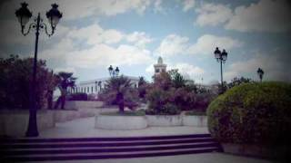 Travel to Tunisia (2010)