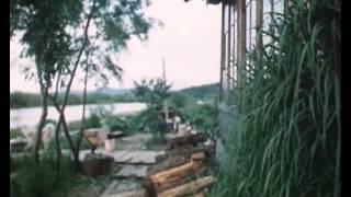 Велик ли Тихий океан (1984)