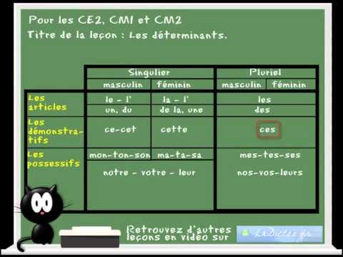 Cours Lecon De Francais Les Determinants Www Ladictee Fr Ce2 Cm1 Cm2 Youtube