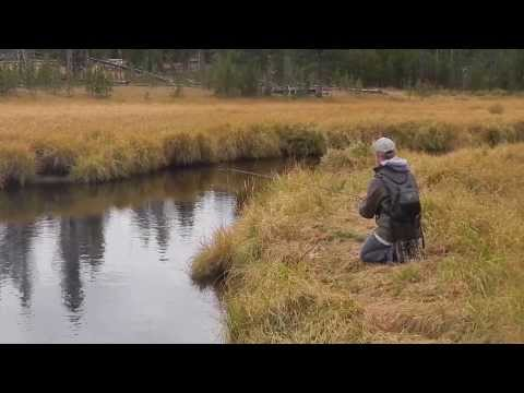 Fly-fishing in Yellowstone
