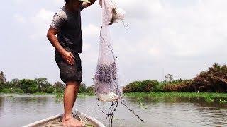 Cá ục như cơm sôi, Thanh niên Chài ngay bầy cá Tra khủng/Great fishing