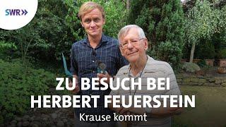 Zu Besuch bei Herbert Feuerstein | Krause kommt