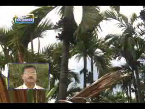 04 09 2014 crop management in the background of fluctuations in weather conditions dr j venkatesh an