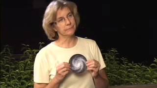 Astronomy Activity: Solar System, Galaxy, Universe: What's the Difference?