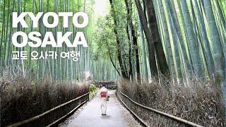코로나 시대 3일간의 오사카 교토여행