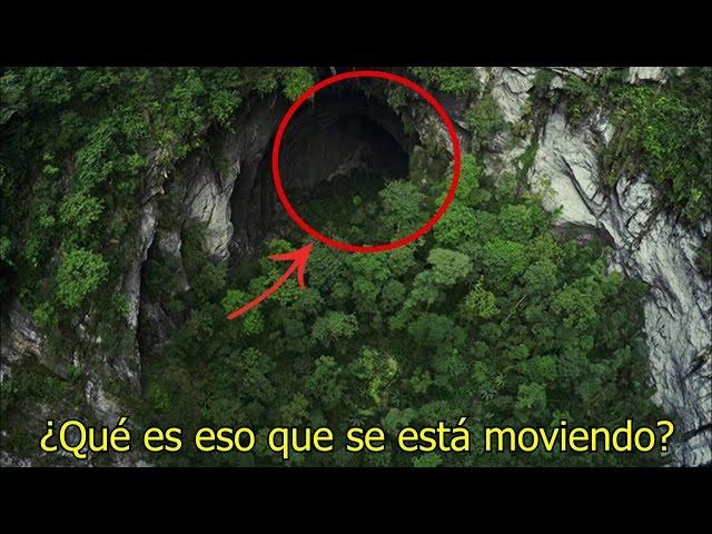 NO Creerás lo que Encontraron Dentro de esta Cueva