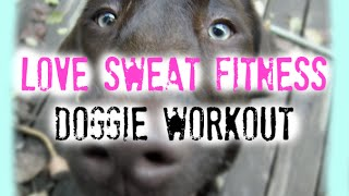 Cute Dog Workout with Hose!